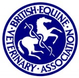 McTimoney therapy recognised by British Equine Veterinary Association