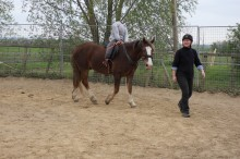 Janice Chadwick - Owner Fir Tree Stud, Training & Livery Yard, East Yorkshire.